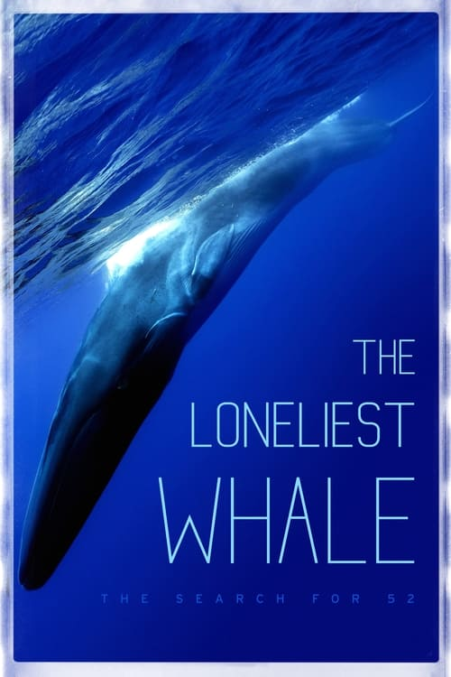 The Loneliest Whale: The Search for 52