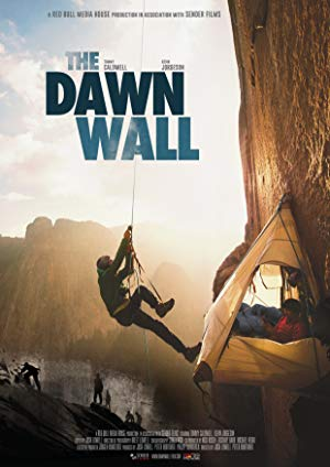 The Dawn Wall poster