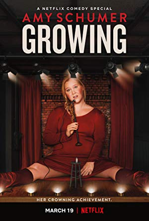 Amy Schumer Growing poster